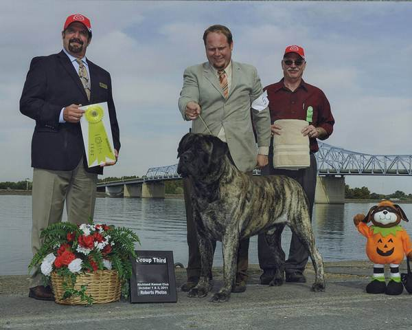 Group Third at 2011 Richland Kennel Club