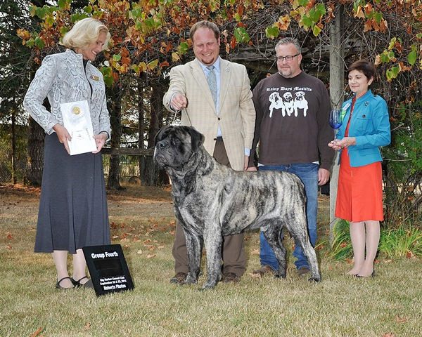 Group Fourth at 2012 Gig Harbor Kennel Club