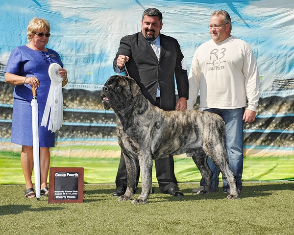 Group Fourth at 2013 Niscqually Kennel Club