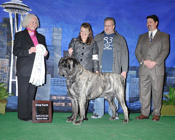 Group Fourth at 2013 Seattle Kennel Club